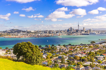 Canvas Prints Oceania Skyline of Auckland #1, New Zealand