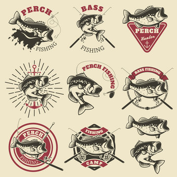 Bass fishing labels. Perch fish. Emblems templates for fishing c