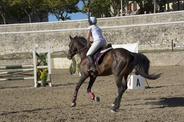 Equitazione, salto con ostacoli