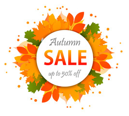 Autumn sale banners isolated on white background. Colorful leaves. Save up to 50%. Vector illustration