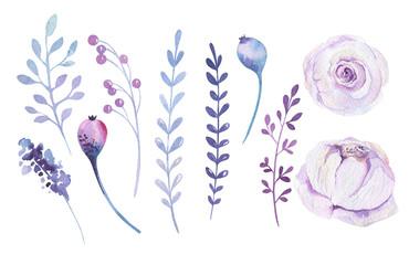Watercolor boho flower set. Spring or summer decoration floral b