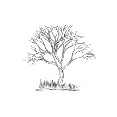 tree in sketch style, vector illustration
