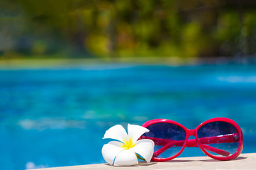 sunglasses and frangipani flower by the pool