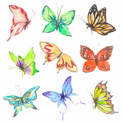 Watercolor butterflies set. Colorful butterflies on white bcakground. Beautiful fragile creatures for decoration.