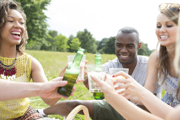 Group Of Friends Making A Toast Whilst Enjoying Picnic