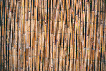 Dry reed straws fence as texture or background