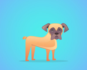 caroon boxer breed vector illustration