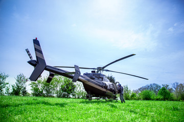 Black with gray stripes bell 407 helicopter standing on green grass field getting ready to fly over blue sky.
