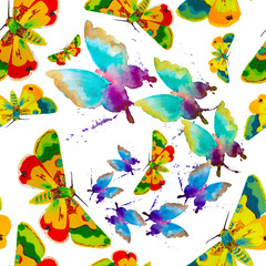 Colorful butterfly on white background. seamless pattern