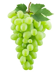 green grapes on the white background