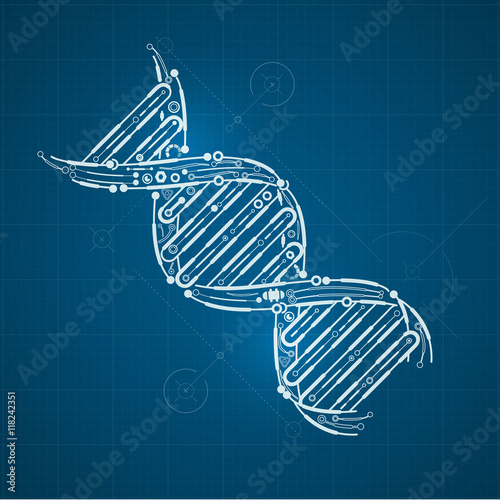 Blueprint of dna dna symbol in technological looks stock image and blueprint of dna dna symbol in technological looks malvernweather Choice Image