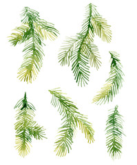 Watercolor Christmas fir-needle tree branches