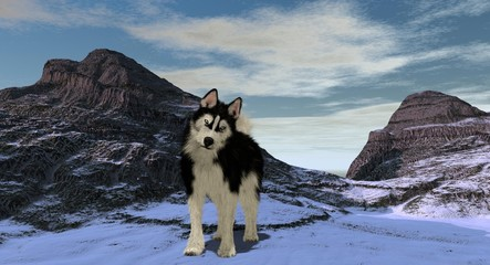 Husky On A Snowy Mountaintop 3D Rendering
