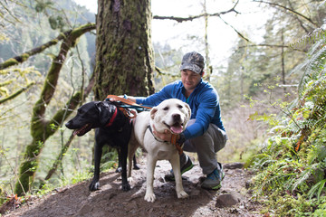 Man with dogs in forest