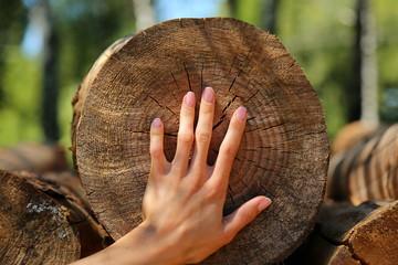 Hands tree wood