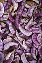 Close up of pile of purple beans