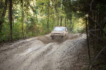Off--road vehicle is driving on the wood at Rainforest Challenge Russia Autumn 2014 PRO-X.