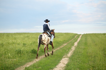 Man in a cowboy hat riding a horse on the meadow road