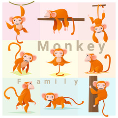 Set of Monkey family , vector , illustration