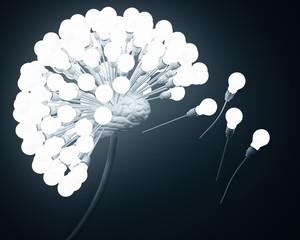 dandelion, brain, bulbs, ideas, inspiration