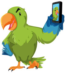 Green parrot taking selfie with phone