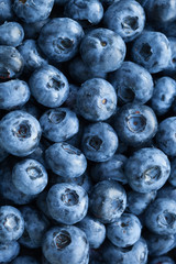 fresh blueberries background, closeup view