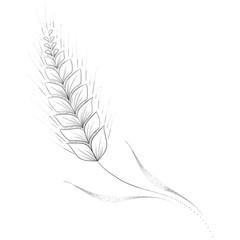 The Wheat. Sketch Artwork, Creative Idea, Innovative art, Concept Illustration, Tattoo Design.