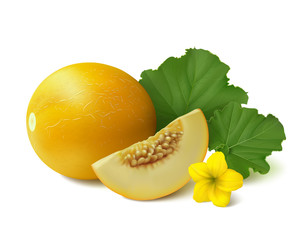 Yellow round melon with slice, flower and leaves on white background