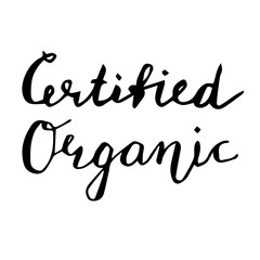 Certified Organic Hand drawn lettering card