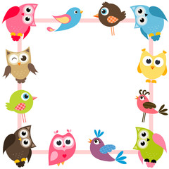 frame with funny colorful birds