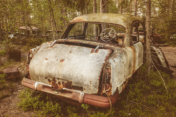 Old rusted scrap car in a forest