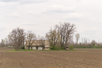 old farm in a field