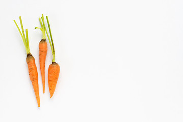 raw organic carrots on white background.