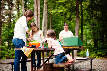 Three generations of Caucasian women cooking at picnic table