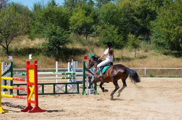 Horseback riding. Jumping qualifier.