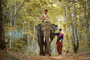 Man riding elephant while woman walking in forest