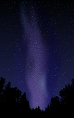 Night sky with stars and milky way.Vector illustration