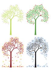 autumn, winter, spring, summer tree, vector set