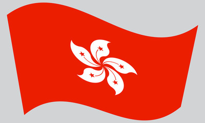 Flag of Hong Kong waving on gray background