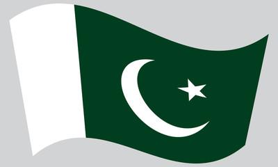 Flag of Pakistan waving on gray background