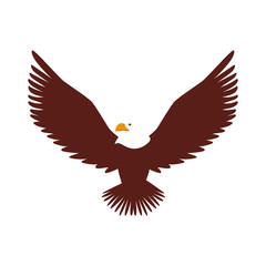 hawk animal bird america wildlife wing head open vector  illustration isolated