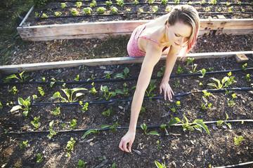Caucasian gardener weeding plants in garden