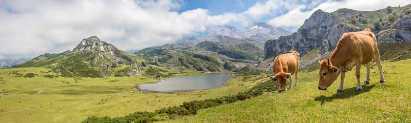 Lago de Enol Bergsee im Parque Nacional de los Picos de Europa (Picos d'Europa) Asturies...