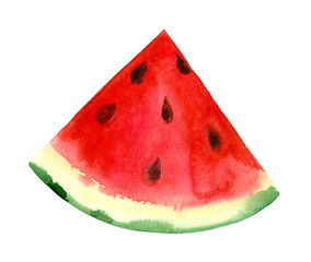 Isolated watercolor watermelon. Hand painted