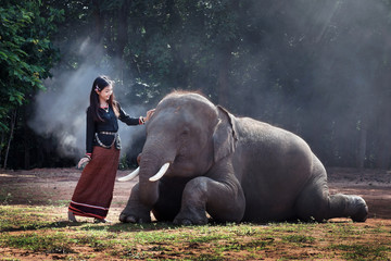The asia beautiful girl standing with the elephants.