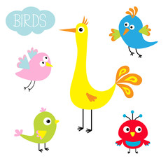 Cartoon bird set. Cute cartoon character. Funny collection for kids. Flat design. Baby illustration.