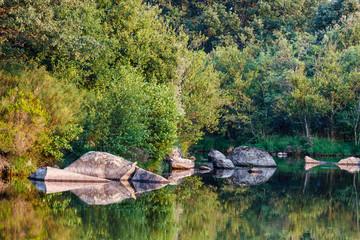 Río Tera. Parque Natural del Lago de Sanabria y alrededores, Zamora.