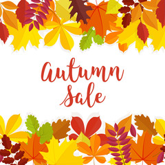 Autumn sale. Fall sale design. Can be used for flyers, banners or posters. Vector illustration with colorful autumn leaves. Vector illustration