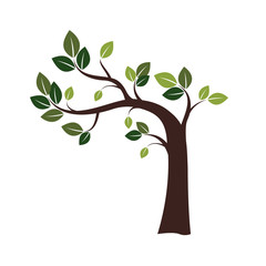 .Color Crooked Tree. Vector Illustration.