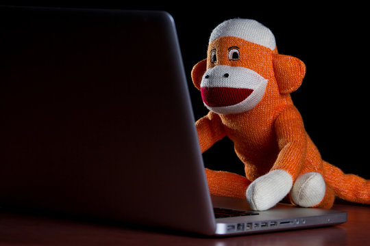 Sock monkey using a computer